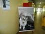 Paulo Freire em Labirintos